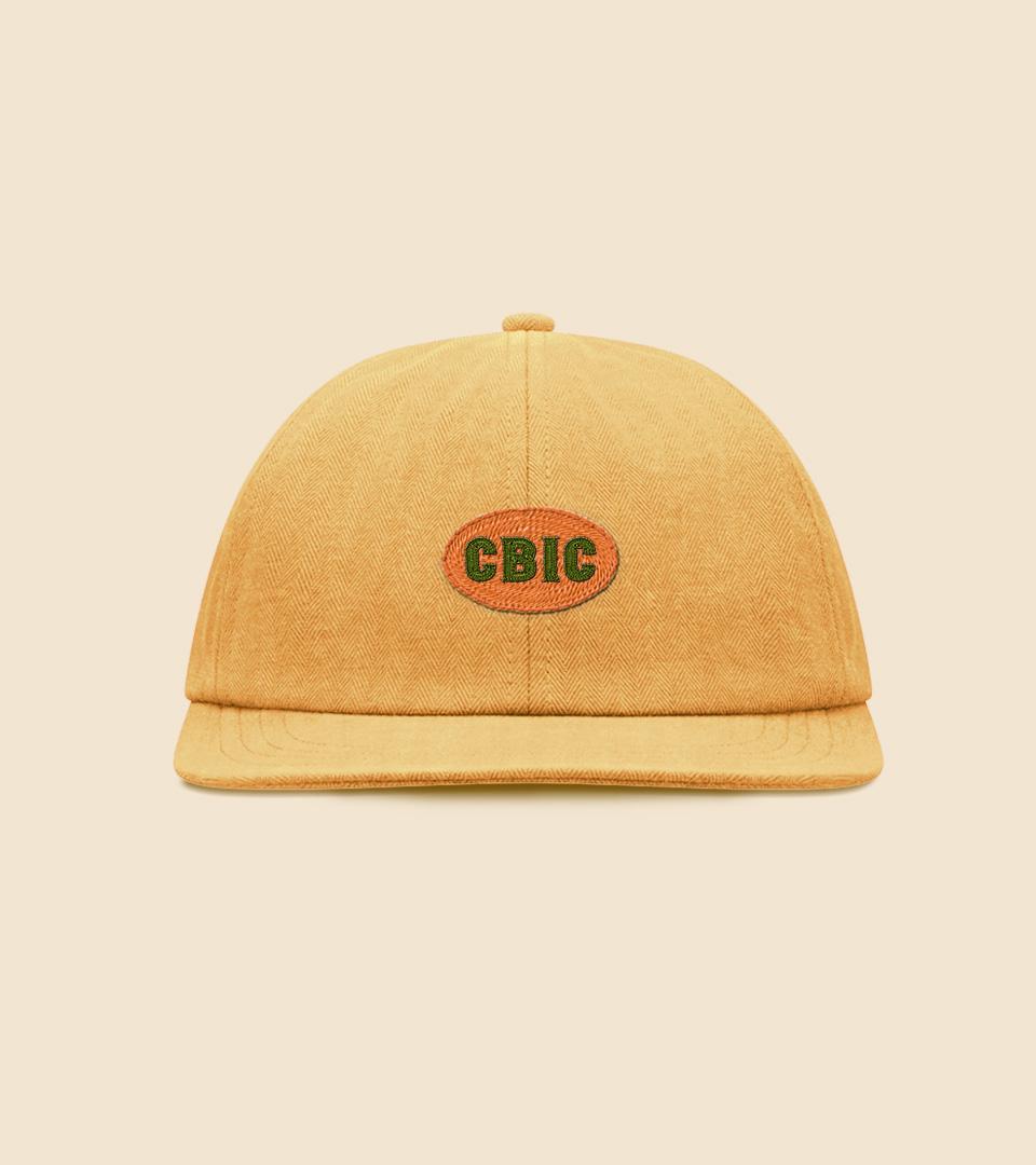 CBIC-Cases2021-02