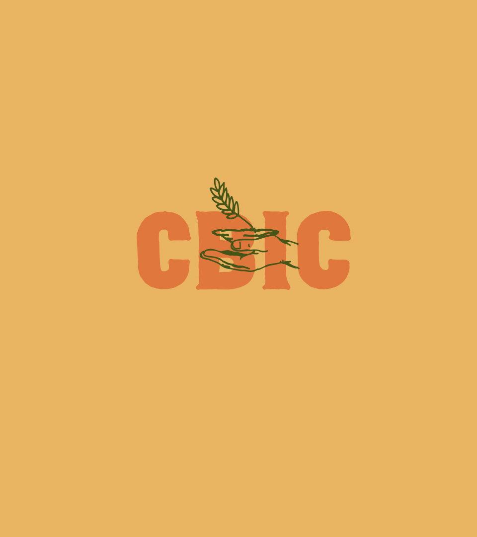 CBIC-Cases2021-10